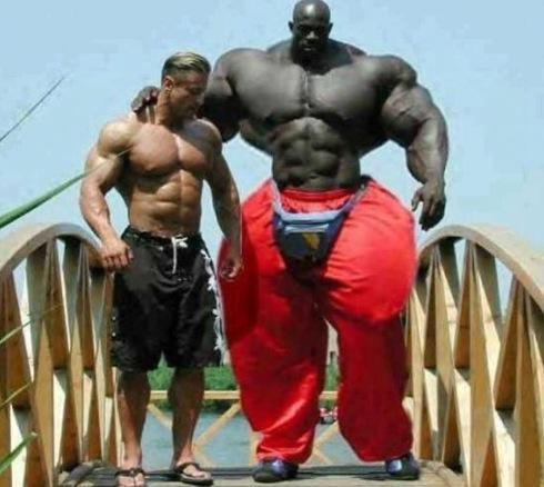 l-homme-le-plus-muscle-du-monde-2013.jpg
