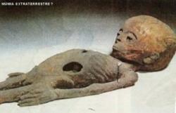 un-extraterrestre-decouvert-momifie-dans-une-pyramide-stargate-suite.jpg