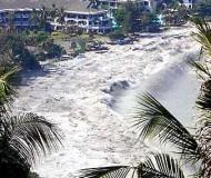 une-victime-d-un-tsunami-retrouvee-sept-ans-plus-tard.jpg